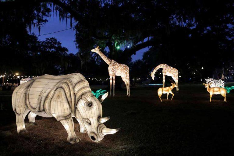 Audubon Zoo Lights Giraffen | ©NOCO